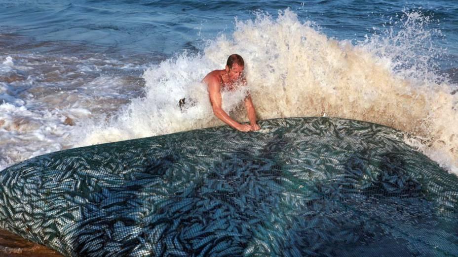 Pescador empurra a rede repleta de sardinhas em Durban. Todos os anos, nessa época, milhares de sardinhas passam pela costa lesta da África do Sul. Os cardumes atraem tubarões, golfinhos e gansos para as praias. Milhares de moradores e turistas acompanham o evento