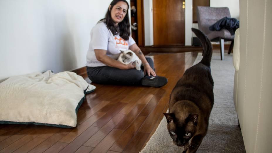 Em outro cliente, Cintia cuida de dois gatos da raça tonquinês: Charlie e Emma