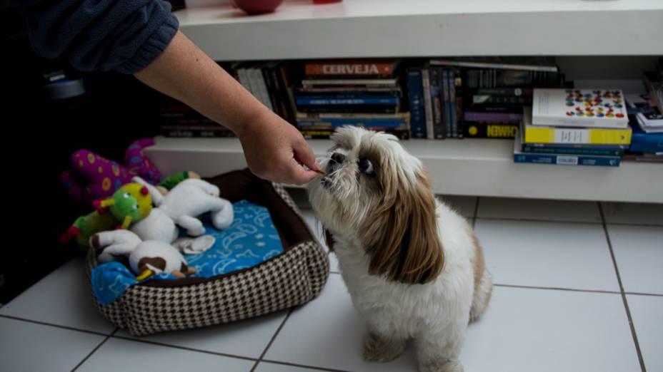 Assim que chega na casa, ela alimenta Frodo