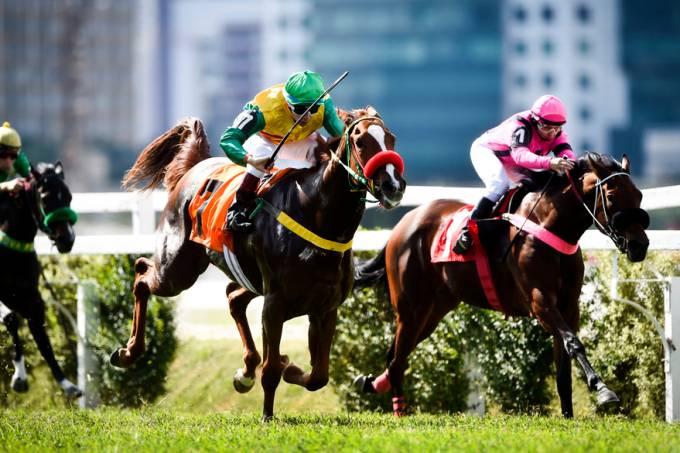 3-pareo-corrida-premio-jockey-club-brasileiro-dsc-1785-original.jpeg