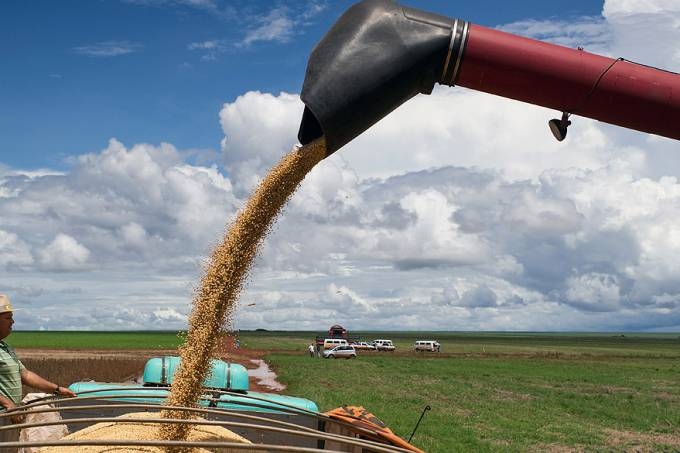 agricultura-campo-novo-mato-grosso-20120601-02-original.jpeg