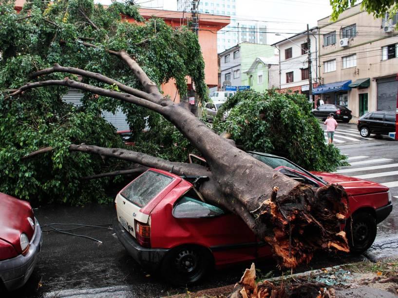 Forte chuva provoca a queda de árvore de grande porte sobre um veículo na rua do Manifesto, no bairro do Ipiranga, zona Sul de São Paulo