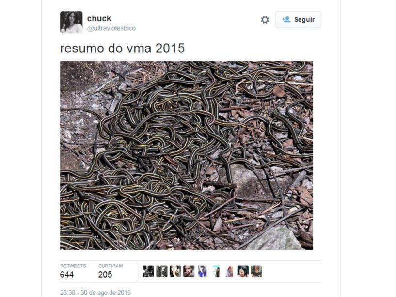 Resumo do VMA: só cobras