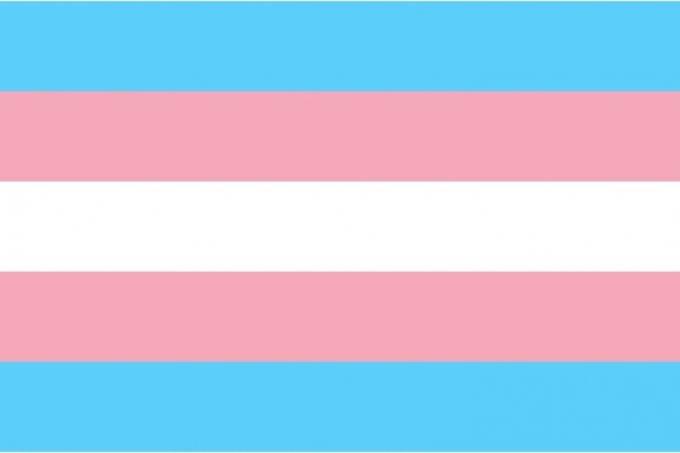 alx_cropped-bandeira_trans_original.jpeg