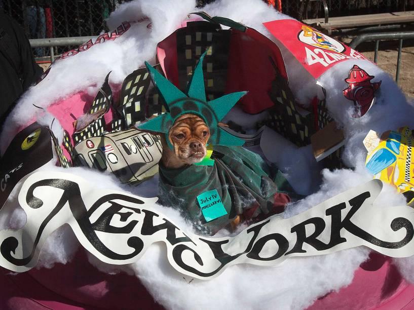 Cachorro participa dodesfile anual de Halloween de cachorro daTompkins Square, em Nova York