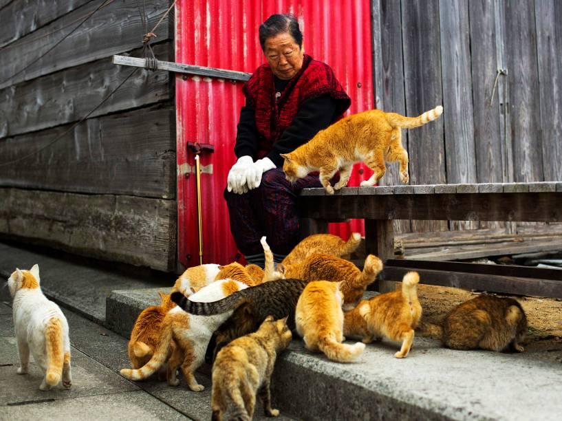 Dezenas de gatos cercam uma moradora da ilha de Aoshima, no sul do Japão