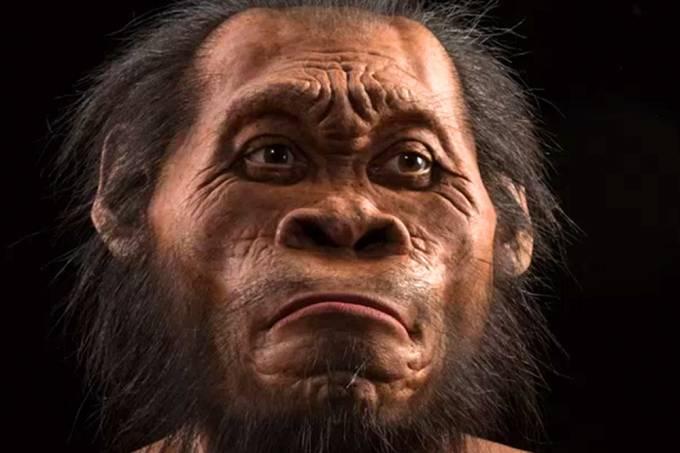 alx_homo-naledi-20150910-08_-1-_original.jpeg