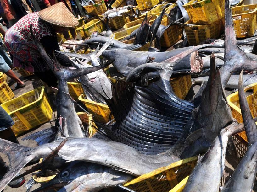 Pescadores limpam marlins que serão leiloados em um mercado de peixe em Tegal, na Indonésia