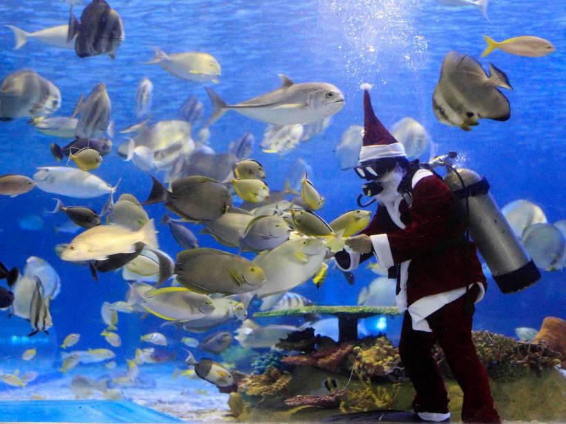 Mergulhador fantasiado de papai Noel alimenta os peixes dentro de um aquário em Manila, nas Filipinas nesta terça-feira (2)