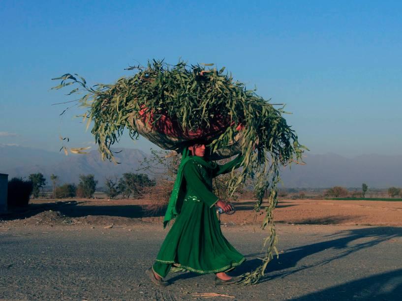 Mulher afegã carrega saco de relva na cabeça pela província deNangarhar, Afeganistão