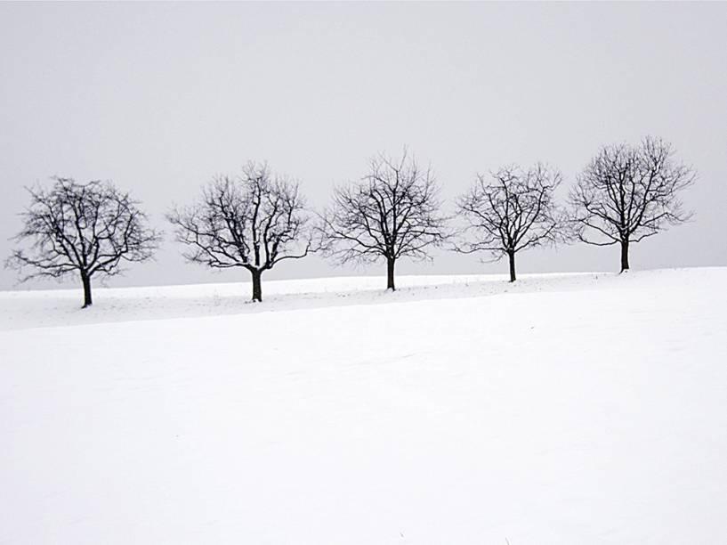 Vista de uma paisagem de inverno em Boezberg, na Suíça