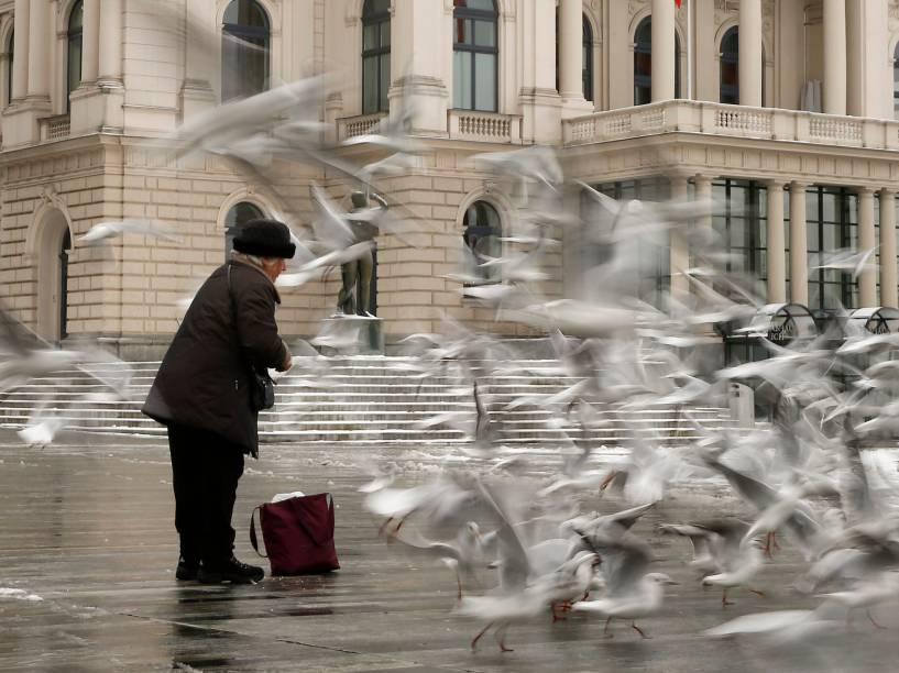 Mulher alimenta gaivotas em frente ao Opera House, Austrália
