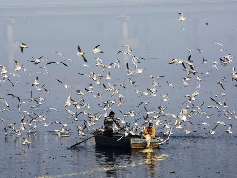 Homem alimenta um bando de aves no rio Yamuna, em Nova Délhi, na Índia - 04/03/2015
