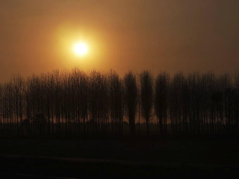 Vista do pôr do sol atrás de uma fileira de árvores nos arredores da cidade de Fatehgarh, na Índia - 17/03/2015