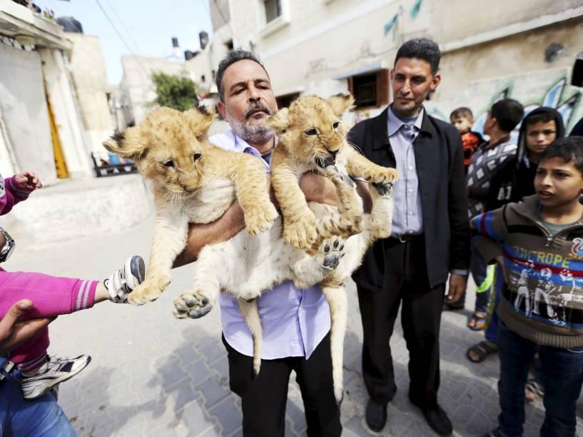 Homem segura dois filhotes de leão em Rafah, sul de Gaza. Os animais foram comprados de um zoológico e vivem com a família - 19/03/2015