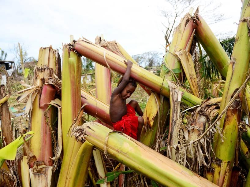Na ilha Mele, em Vanuatu, uma criança brinca em um bananal destruído após a passagem do ciclone Pam