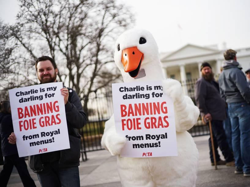 Em Washingon, um ativista da PETA fantasiado segura cartaz para agradecer o Príncipe Charles por ter removido o foie gras do cardápio real<br><br>