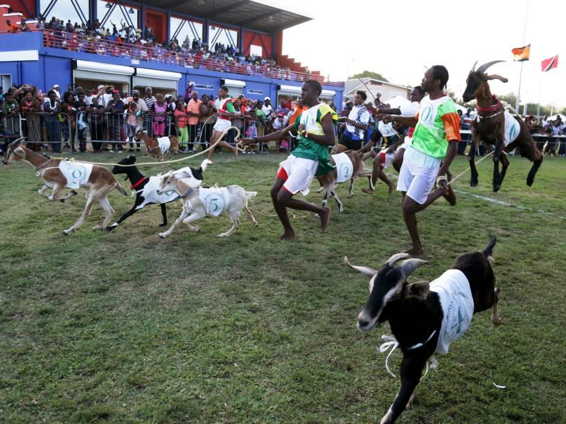 Criadores participam de corrida de cabras realizada no período da Páscoa em Mount Pleasant, em Trinidad e Tobago