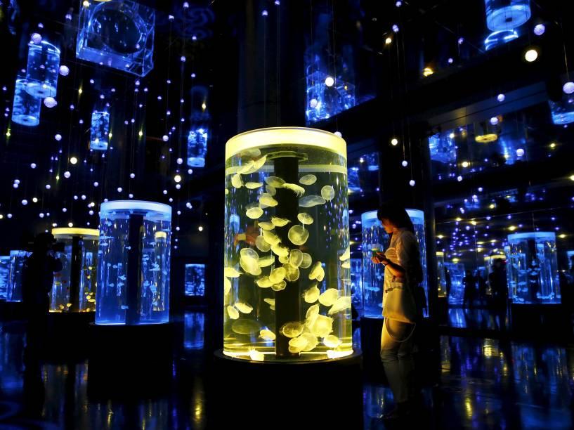 Mulher observou águas-vivas durante reabertura do parque aquático Shinagawa, em Tóquio, no Japão