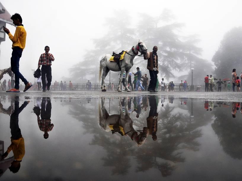 A sombra de um homem com seu cavalo refletiu em uma poça de água na cidade montanhosa de Shimla, na Índia