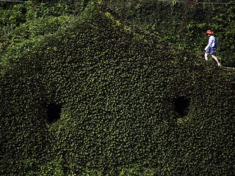Em uma vila abandonada na ilha de Shengshan, ao leste de Xangai, turista foi fotografada enquanto caminhava entre uma construção coberta por plantas