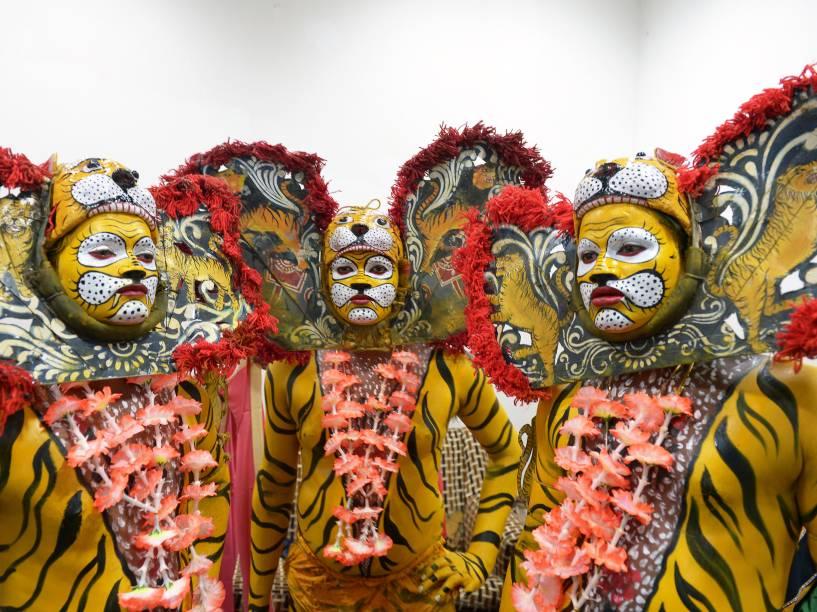 Dançarinos usam trajes tradicionais durante comemoração do Dia Internacional do Tigre em Calcutá, na Índia - 29/07/2015