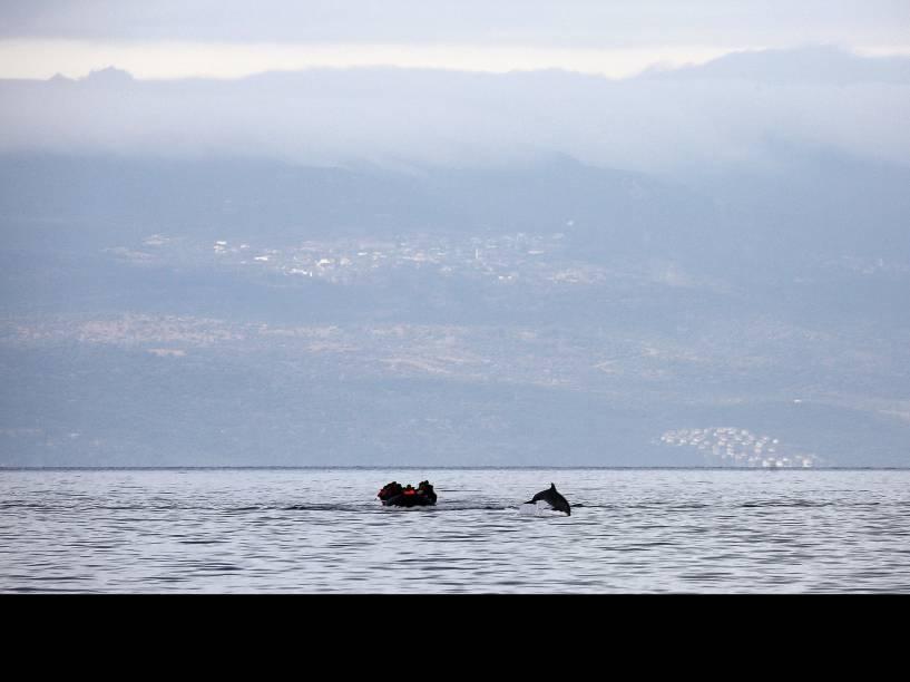 Golfinho salta na frente de uma balsa superlotada de refugiados sírios ao cruzar o Mar Egeu da Turquia para a ilha grega de Lesbos - 21/10/2015