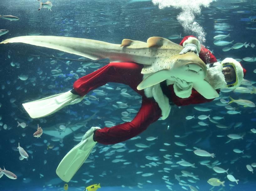 Para atrair visitantes, mergulhador vestido de Papai Noel nada com peixes em aquário de Tóquio, no Japão - 12/11/2015