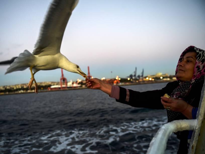 Mulher alimenta uma gaivota, enquanto viaja em uma balsa sobre o Bósforo em Istambul, na Turquia - 04/12/2015
