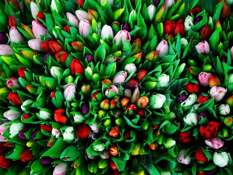 Na Áustria, floriculturas se preparam para o Valentines Day