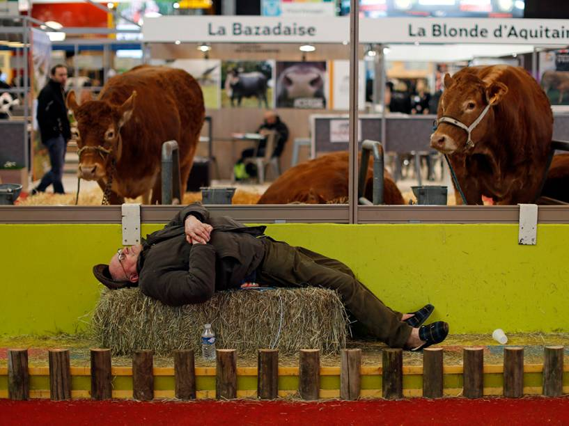 Agricultor cochila perto de vacas expostas no Show Internacional de Agricultura em Paris, na França. O evento teve início no final de semana e ocorre até domingo (6)