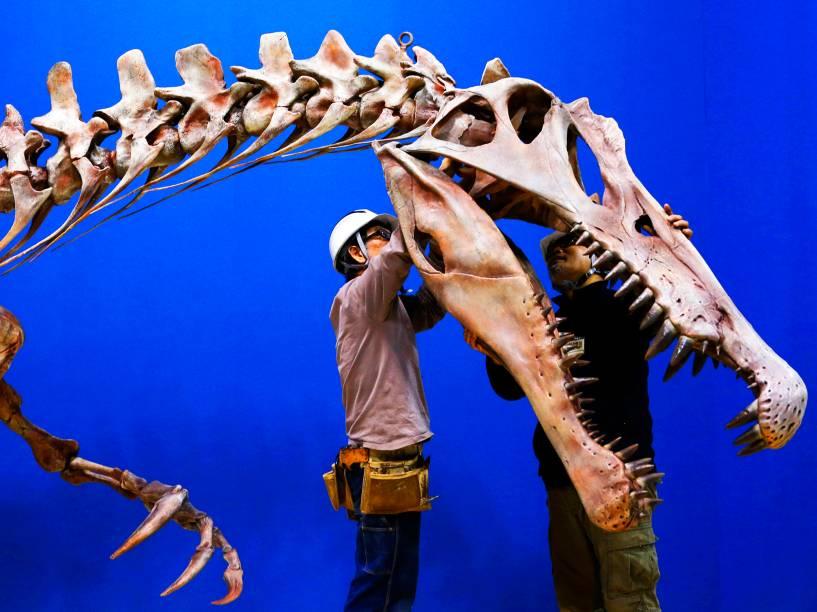 Trabalhadores ajustam réplica de um espinossauro, durante preparação para a Dinosaur Expo, no Museu Nacional Natural e Científico de Tóquio, no Japão, nesta terça-feira (01)