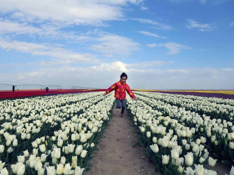 Garota corre entre campos de tulipas, que foi aberto ao público por dois dias em na cidade de Konya, Turquia - 13/04/2016