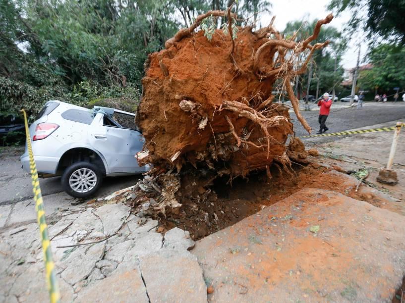 Chuva derruba árvore sobre um carro entre a avenida Dr. Arnaldo e a rua Alfonso Bovero, no Sumaré, zona oeste de São Paulo - 17/05/2016