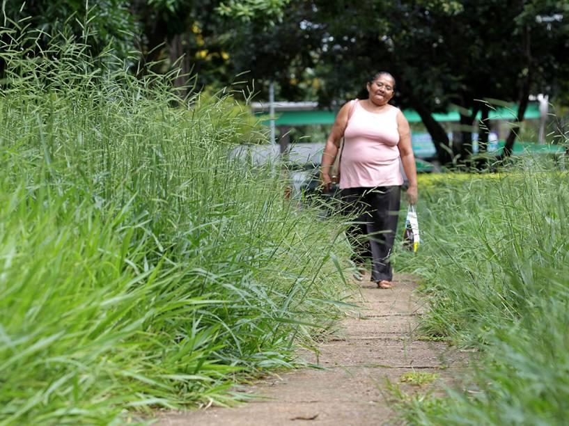 Mulher caminha em meio ao mato na região central de Brasília