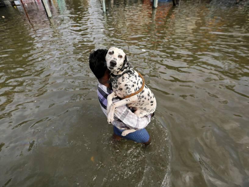 Homem carregou um cão enquanto atravessa uma rua inundada em Chennai, no estado de Tamil Nadu, sul da Índia