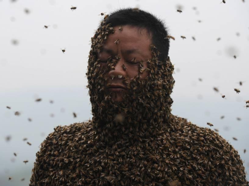 Apicultor chinês coberto com cerca de 460 mil abelhas na cidade de Chongqing