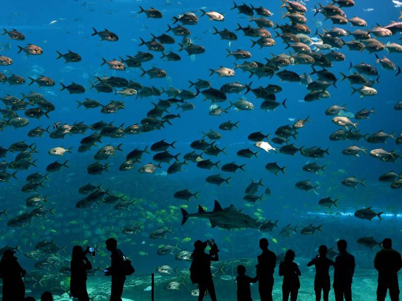 Inaugurado em março de 2014, o parque aquático da cidade chinesa de Zhuhai é considerado o maior do mundo