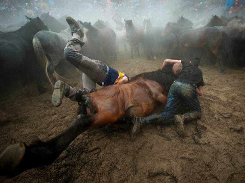 Na cidade de Sabucedo, espanhóis capturam e aparam a crina de cavalos selvagens durante a tradicional Rapa das Bestas