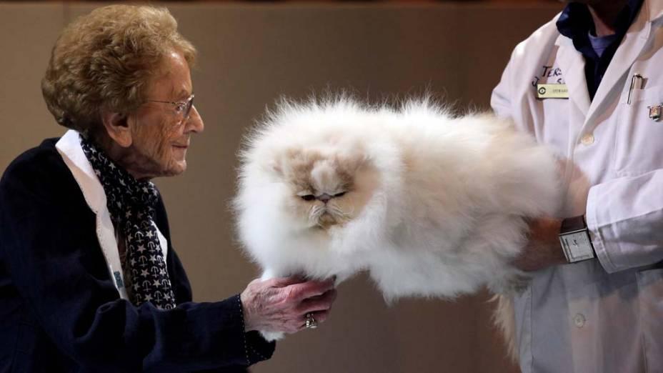 """Jurados examinam gato que participa da competição de beleza """"Cat Fancys Supreme Cat Show"""" em Birmingham, na Inglaterra"""