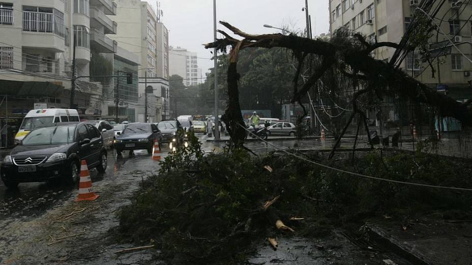 Árvore caiu em Botafogo, na Zona Sul do Rio, deixando o trânsito lento