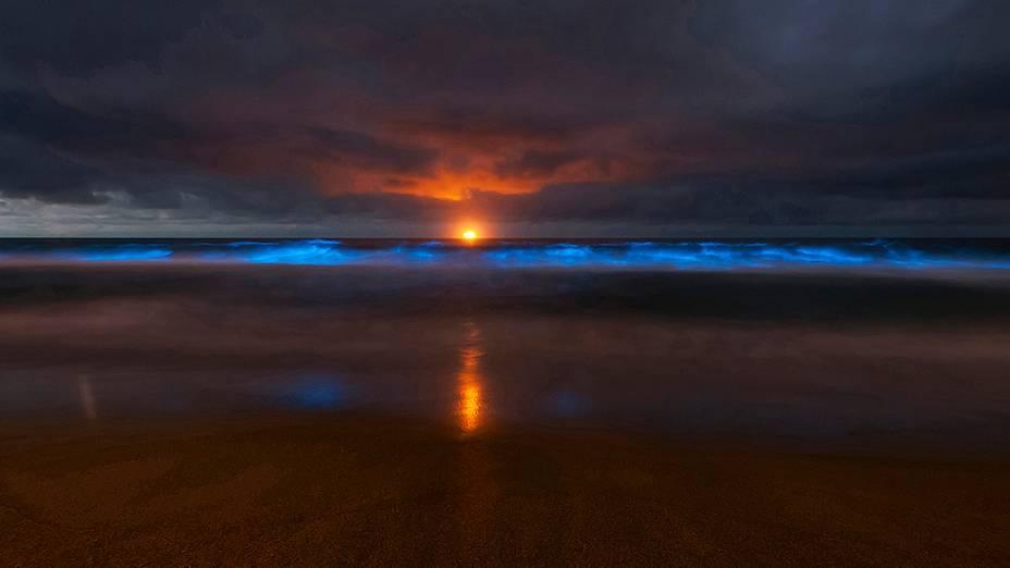 Foto divulgada nesta sexta-feira, mostra onda repleta de algas fosforescentes quebra na praia de Stanwell Park, ao sul de Sidney, na Austrália. As algas da espécie Noctiluca Scintillans tomaram as águas, deixando-as vermelhas e, à noite, brilhantes