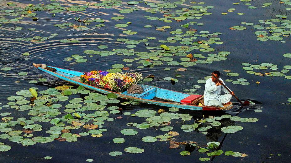 Vendedor de flores num barco no Lago Nigeen em um dia quente de verão, nos arredores de Srinagar, Índia
