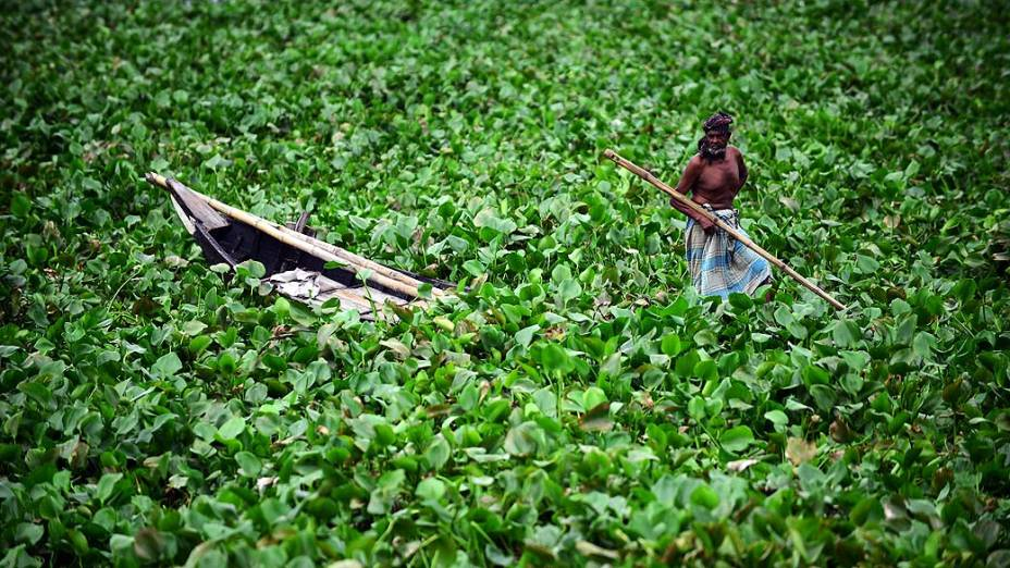 Barqueiro em rio cheio de plantas em Daca, Bangladesh