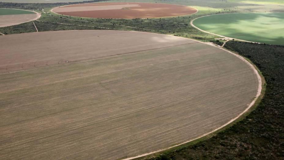 Plantação de Soja, Barreiras, Bahia