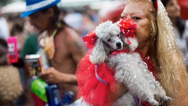 Mulher leva o seu poodle para o carnaval dos animais, na praia de Copacabana