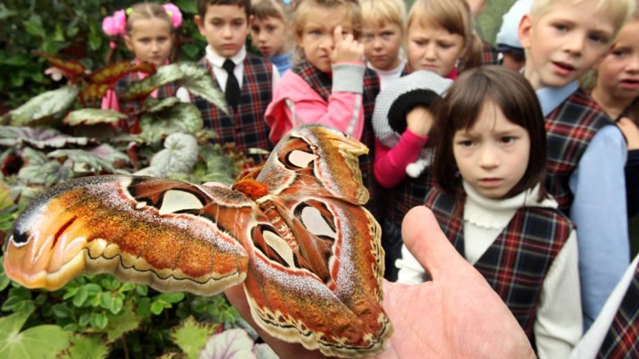 Crianças observam borboleta gigante  em São Petersburgo, Rússia
