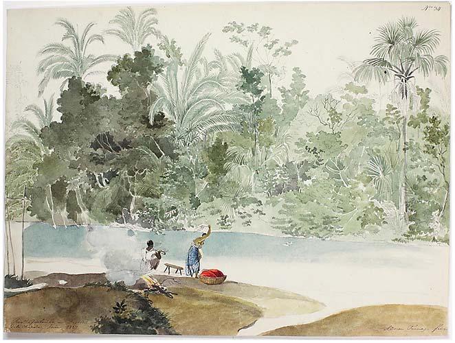 Obra pintada com aquarela e lápis por Adrien-Aimée Taunay: Rio Quilombo, no Distrito da Chapada