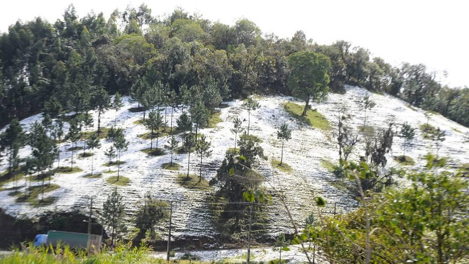 Flocos de gelo foram vistos em todas partes altas da cidade de Blumenau. A última e única vez foi em 2000, quando a neve foi vista apenas no Morro do Cachorro. A temperatura também bateu recordes terça e chegou a 1,4 ºC