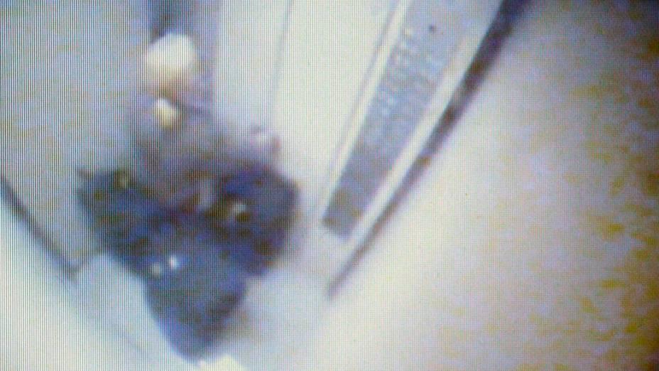 Câmera de segurança mostra Elize Matsunaga saindo com malas do prédio onde morava com o executivo da Yoki